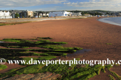 Summer, Paignton beach, Torbay, English Riviera