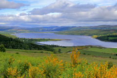 View over Dornoch Firth; Highlands of Scotland