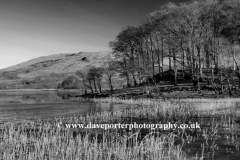 Reflections in Loch Awe Argyll and Bute