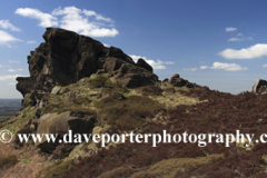 The rock formations of the Ramshaw Rocks
