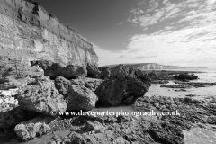 The 7 sisters cliffs from Hope Gap, Seaford Head