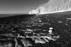 Castle Hill Beach and Chalk Cliffs, Newhaven town