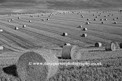 Harvest Bales on the Sussex Downs