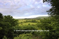 Summer Landscape over Bramber village