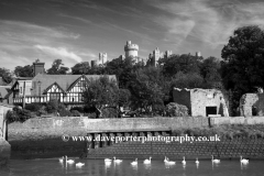 Swans on the river Arun, Arundel Castle