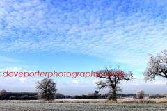 Hoare frost winter scene, Fenland fields near Whittlesey town, Fenland, Cambridgeshire, England; Britain; UK