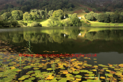 Reflections in Loughrigg Tarn, Lake District