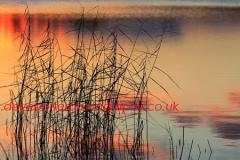 Sunset over a Fenland waterway, Cambridgeshire