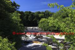 River Ure, Upper falls of Aysgarth Falls, Wensleydale