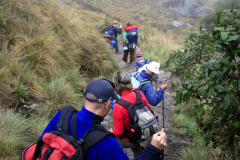 Walkers trekking down the Runcuracay Pass, Inca Trail