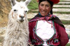Peruvian woman and Alpaca, Cusco town, Peru