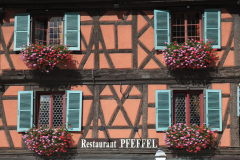 Colourful shutters and flowers in Colmar  France